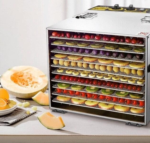 máy sấy hoa quả